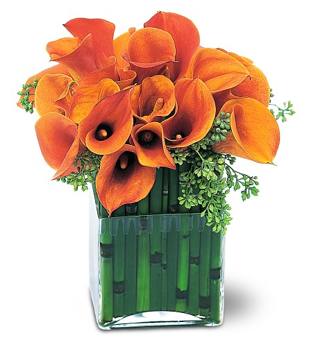 Bronze Callas in Laurel MD, Rainbow Florist & Delectables, Inc.