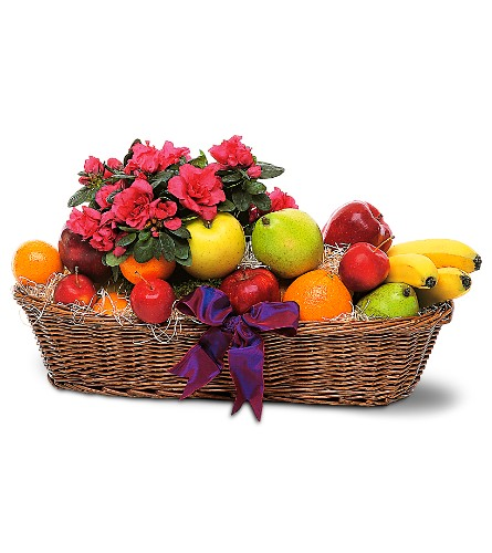 Plant and Fruit Basket in Oklahoma City OK, Capitol Hill Florist & Gifts