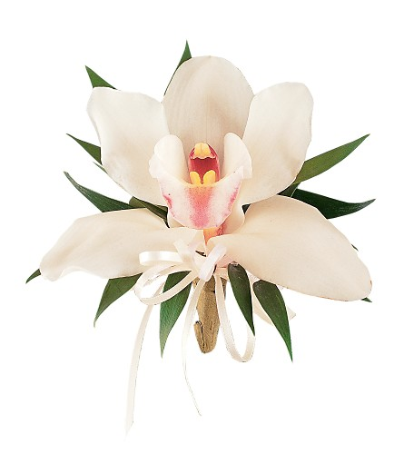 Cymbidium Orchid Corsage in Halifax NS, Atlantic Gardens & Greenery Florist