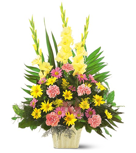 Warm Thoughts Arrangement in Dallas TX, In Bloom Flowers, Gifts and More