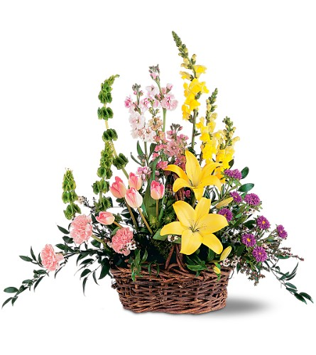 Springtime Basket in San Francisco CA, Fillmore Florist