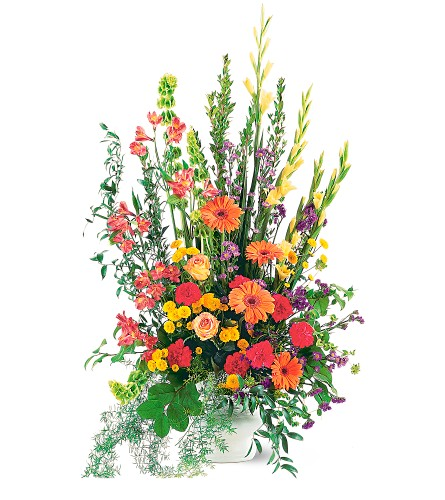 Summer Sentiments Arrangement in San Francisco CA, Fillmore Florist
