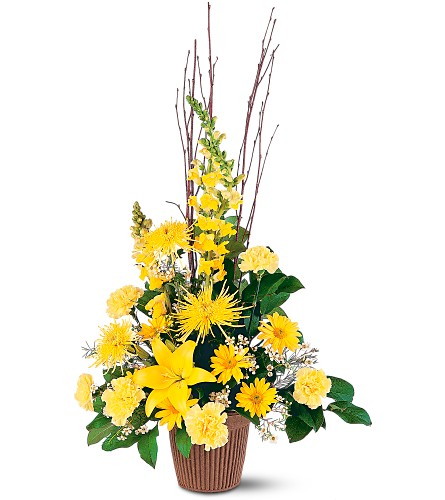 Brighter Blessings Arrangement in Bayside NY, Bayside Florist Inc.