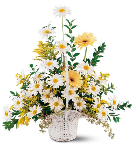 Drop of Sunshine Basket in San Francisco CA, Fillmore Florist