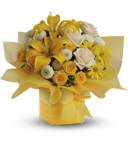 Teleflora's Sunshine Surprise in Birmingham AL, Norton's Florist