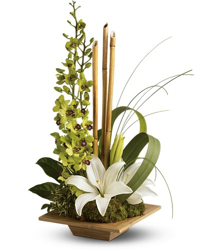 Teleflora's Bamboo Serenity in Salt Lake City UT, Especially For You