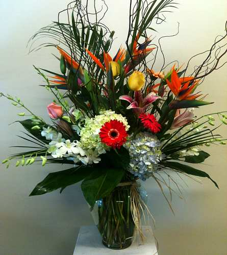 Royal Tropics in Naples FL, Gene's 5th Ave Florist