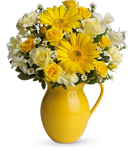 Teleflora's Sunny Day Pitcher of Cheer in Seneca Falls NY, Blossoms By Cosentino