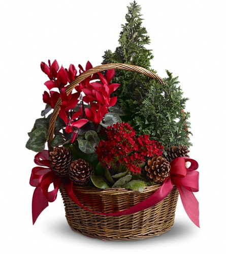 Tannenbaum Basket in Olean NY, Mandy's Flowers