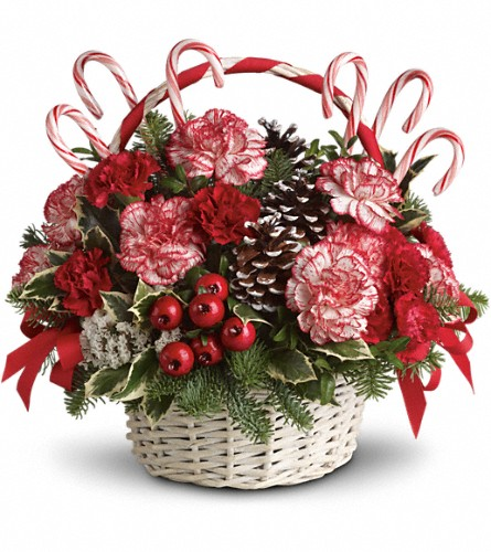 Candy Cane Christmas in New York NY, Fellan Florists Floral Galleria