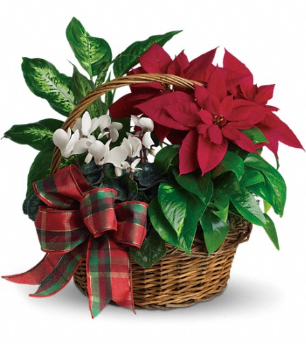 Holiday Homecoming Basket in Rocky Mount NC, Flowers and Gifts of Rocky Mount Inc.