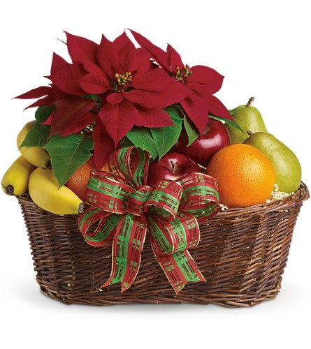 Fruit and Poinsettia Basket in Webster TX, NASA Flowers