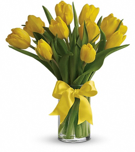 Sunny Yellow Tulips in Park Ridge NJ, Park Ridge Florist