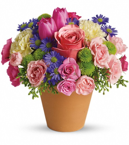Spring Sonata in usa-send-flowers NJ, Stanley's America's Florist & Gifts