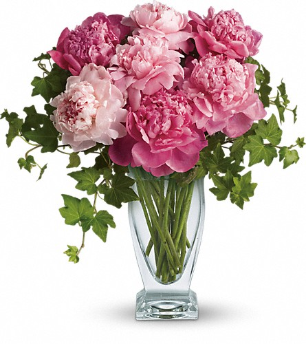 Teleflora's Perfect Peonies in Tacoma WA, Lund Buds & Blooms