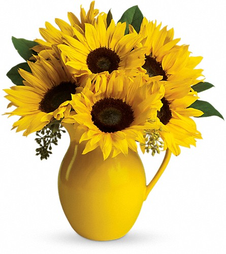 Teleflora's Sunny Day Pitcher of Sunflowers in Lewiston ME, Val's Flower Boutique, Inc.