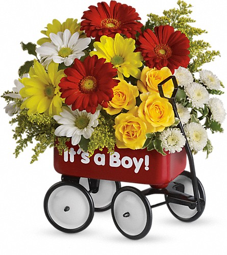 Baby's Wow Wagon by Teleflora - Boy in Denton TX, Crickette's Flowers & Gifts