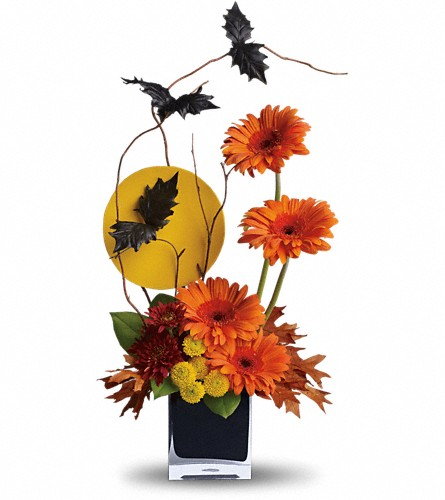 Teleflora's Boo-tiful Bats in Orwell OH, CinDee's Flowers and Gifts, LLC