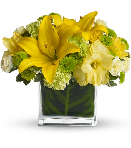 Oh Happy Day by Teleflora in Manalapan NJ, Rosie Posies