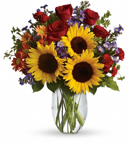 Pure Happiness in usa-send-flowers NJ, Stanley's America's Florist & Gifts