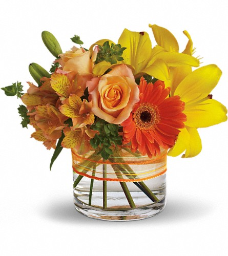 Sunny Siesta in Grand Falls/Sault NB, Grand Falls Florist LTD