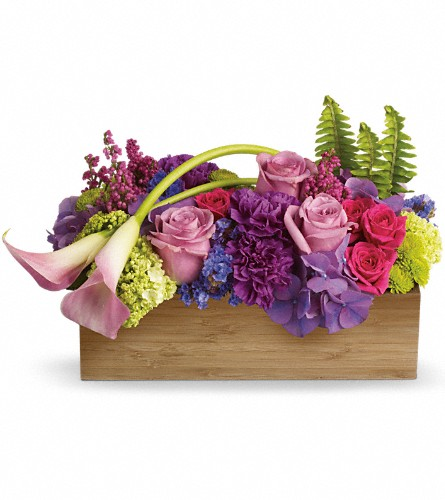 Teleflora's Ticket to Paradise in Dallas TX, Petals & Stems Florist