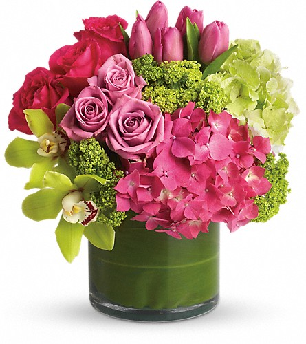New Sensations in Raritan NJ, Angelone's Florist - 800-723-5078