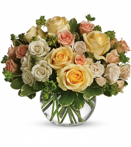 This Magic Moment Local and Nationwide Guaranteed Delivery - GoFlorist.com
