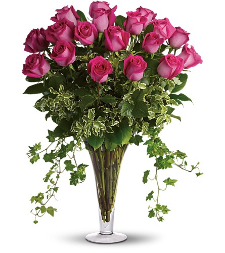 Dreaming in Pink - 18 Long Stemmed Pink Roses in Boston MA, Exotic Flowers