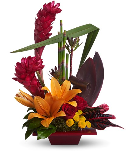 Teleflora's Tropical Bliss in Friendswood TX, Lary's Florist & Designs LLC