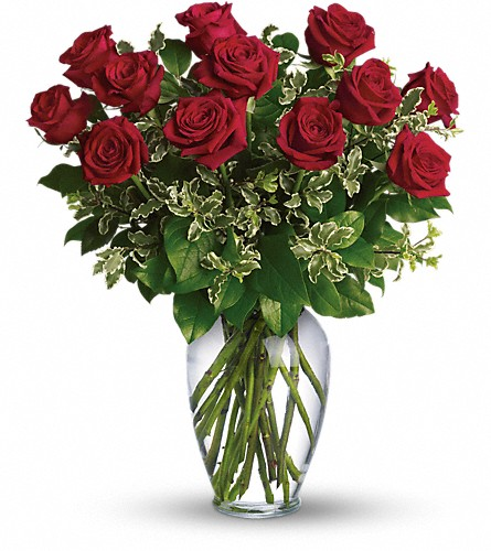 Always on My Mind - Long Stemmed Red Roses in Washington IA, Wolf Floral, Inc
