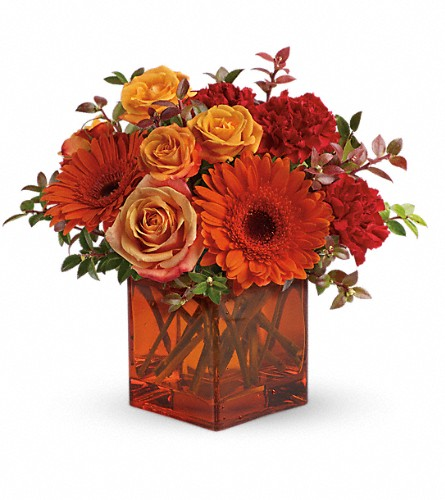 Teleflora's Sunrise Sunset in Hollywood FL, Al's Florist & Gifts