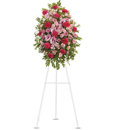 Pink Tribute Spray Local and Nationwide Guaranteed Delivery - GoFlorist.com