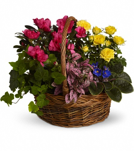 Blooming Garden Basket in Battle Creek MI, Swonk's Flower Shop