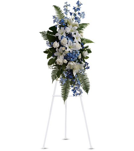 Ocean Breeze Spray in Albany NY, Emil J. Nagengast Florist