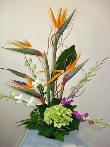 Paradise Memories in Naples FL, Gene's 5th Ave Florist