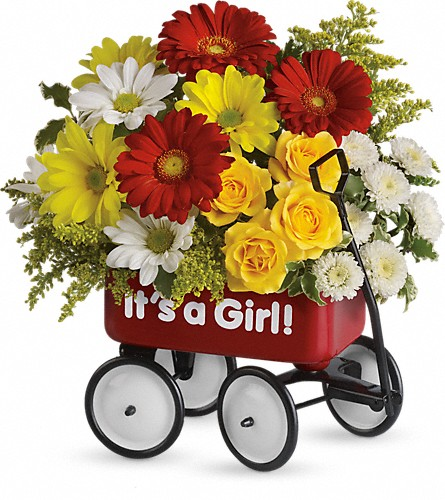 Baby's Wow Wagon by Teleflora - Girl in Kokomo IN, Jefferson House Floral, Inc