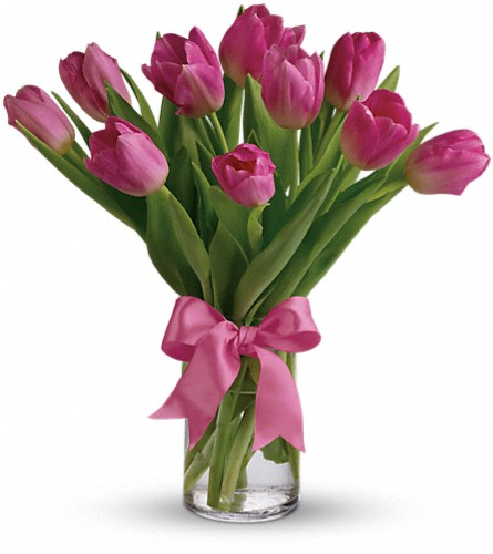 Precious Pink Tulips in Bonita Springs FL, Bonita Blooms Flower Shop, Inc.