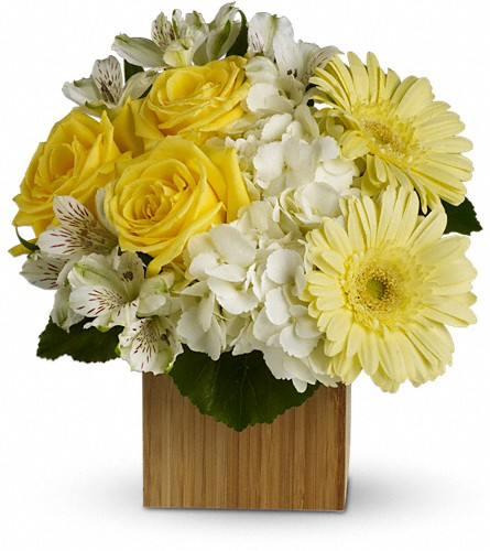 Teleflora's Pure Bliss in Bakersfield CA, White Oaks Florist