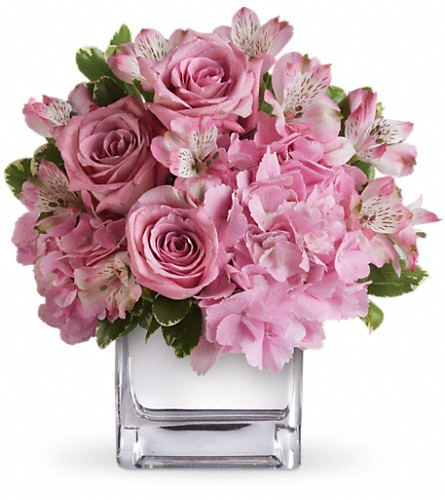 Teleflora's Be Sweet Bouquet in San Francisco CA, Fillmore Florist