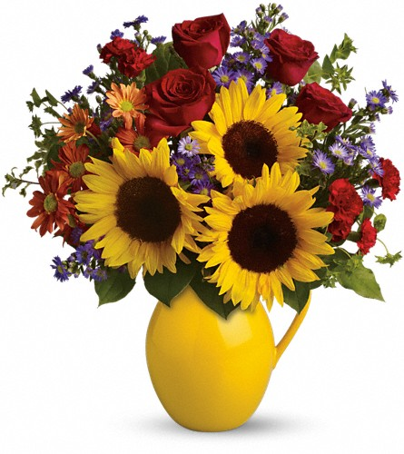 Teleflora's Sunny Day Pitcher of Joy in Plymouth MI, Vanessa's Flowers