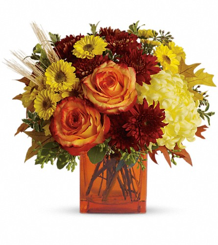 Teleflora's Autumn Expression in Homer NY, Arnold's Florist & Greenhouses & Gifts