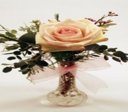 Single Stem Cream Rose Local and Nationwide Guaranteed Delivery - GoFlorist.com