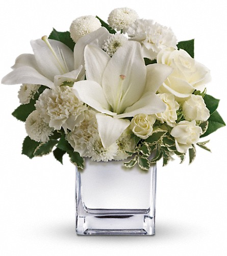 Teleflora's Peace & Joy Bouquet in San Francisco CA, Fillmore Florist