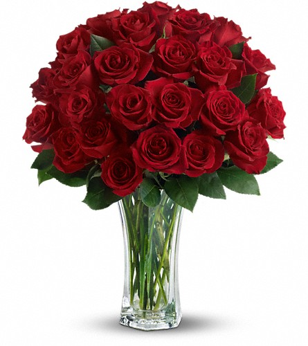 Love and Devotion - Long Stemmed Red Roses in Wilmington MA, Designs By Don Inc