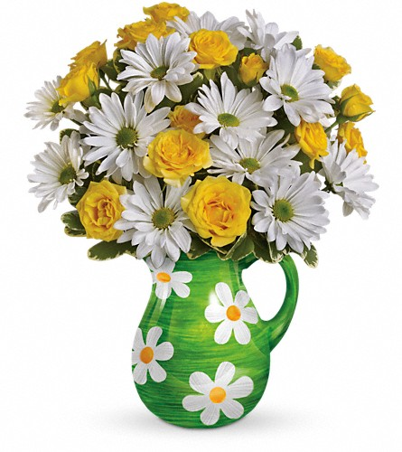 Teleflora's Happy Daisies Bouquet in Manchester NH, Chalifour's Flowers