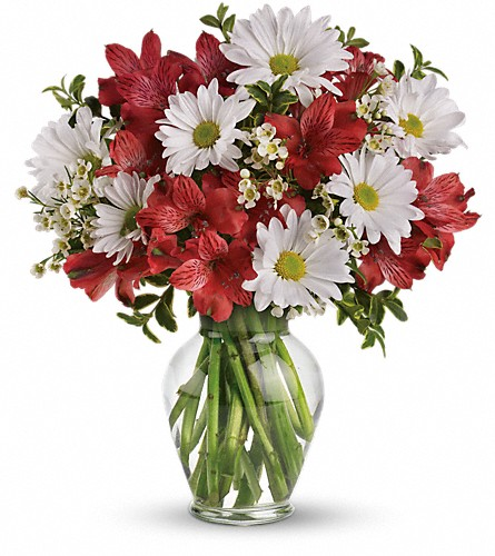 Dancing in Daisies in Norwich NY, Pires Flower Basket, Inc.