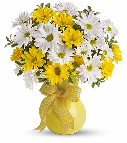 Teleflora's Upsy Daisy in Inverness FL, Flower Basket
