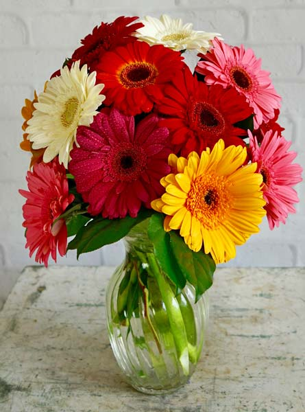 Happiest Gerbera's  in Arlington Heights IL, Sylvia's - Amlings Flowers