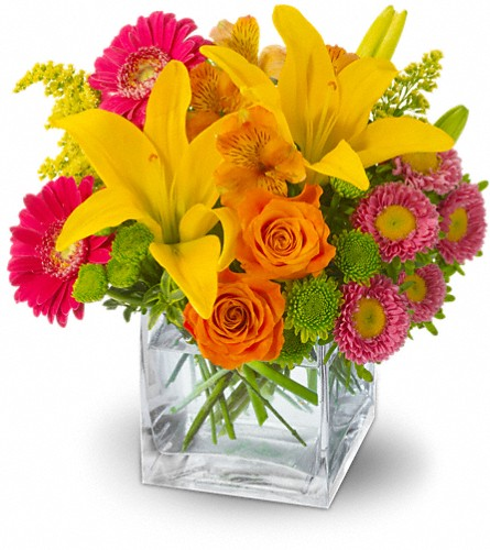 Teleflora's Summertime Splash in Phoenix AZ, foothills floral gallery